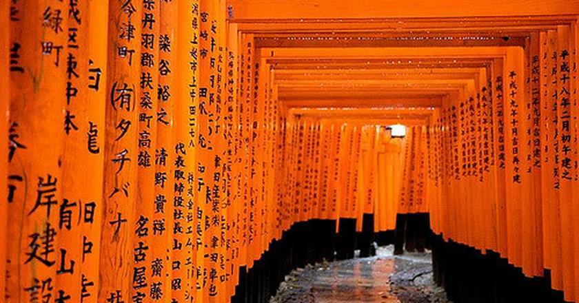 Walking Through a Tunnel of Torii Gates | © indigoMood /Flickr
