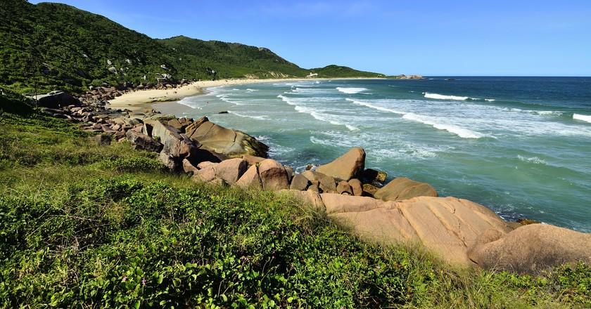 Praia Galheta   © Papa Pic/Flickr