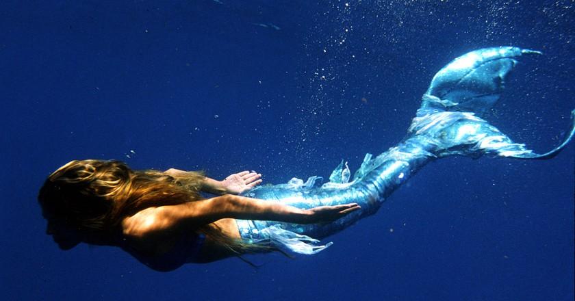 Mermiad under the sea | ©Mehgan Heaney-Grier / Wikimedia https://upload.wikimedia.org/wikipedia/commons/thumb/0/09/MehganTheMermaid.jpg/1280px-MehganTheMermaid.jpg