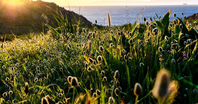 Spring in Patmos   © Giacomo Gasperini / Flickr
