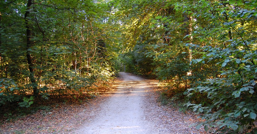 "<a href=""https://www.flickr.com/photos/ndave/865771941/sizes/l"">The Road │© David Nagy / Flickr cc.</a>"