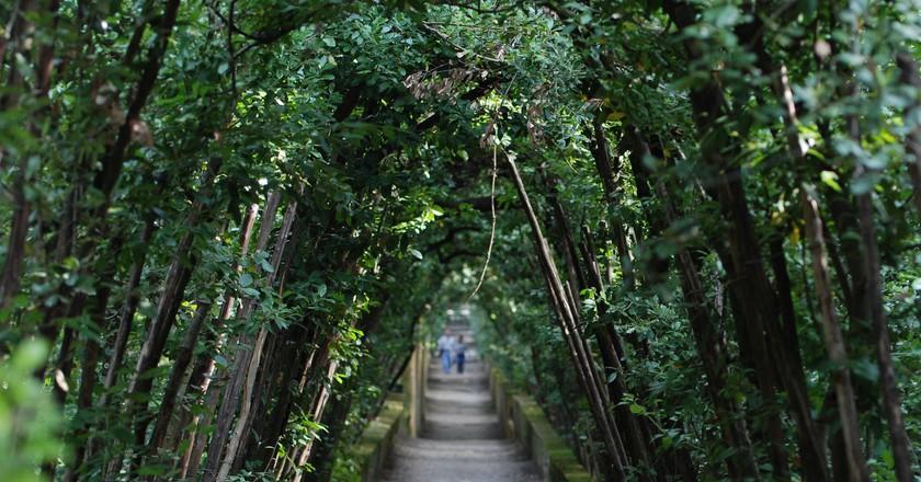 Green Arch in Boboli Garden | © Tammy Lo/Flickr
