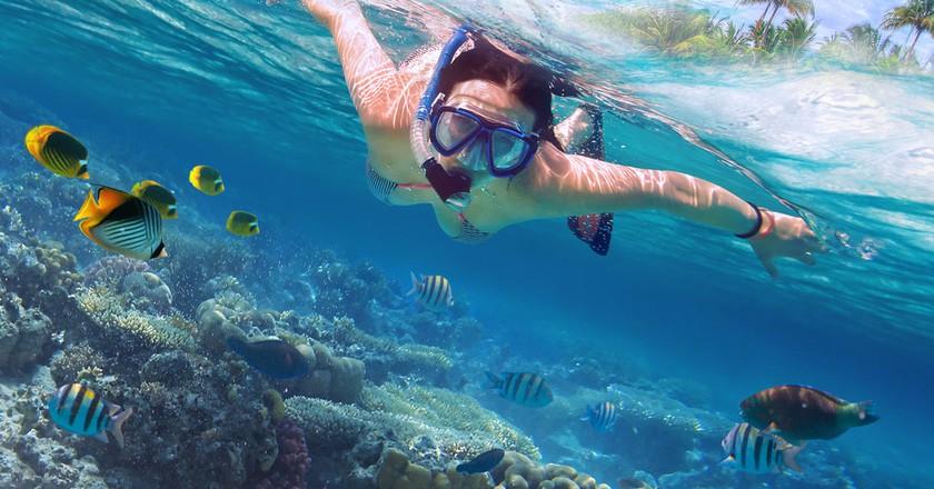 Snorkeling in Thailand | © Patryk Kosmider / Shutterstock