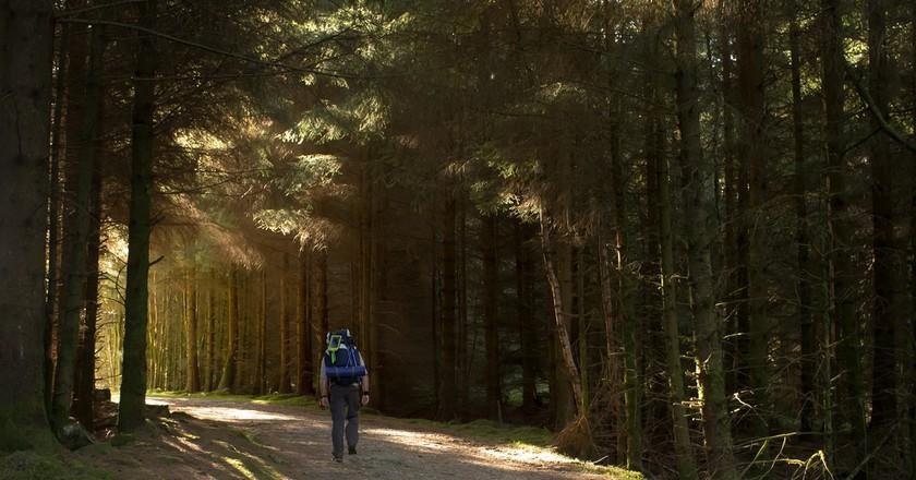 Hike Through Trossachs National Park