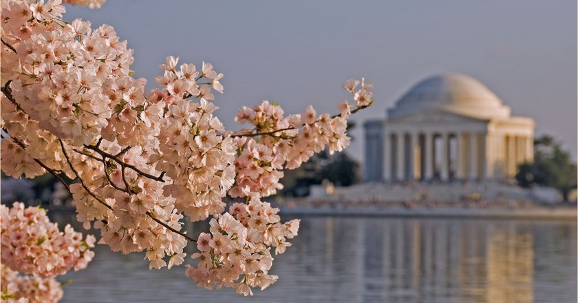 Explore the Jefferson Memorial and the National Mall, there's an app for that | © Ron Cogswell / Flickr
