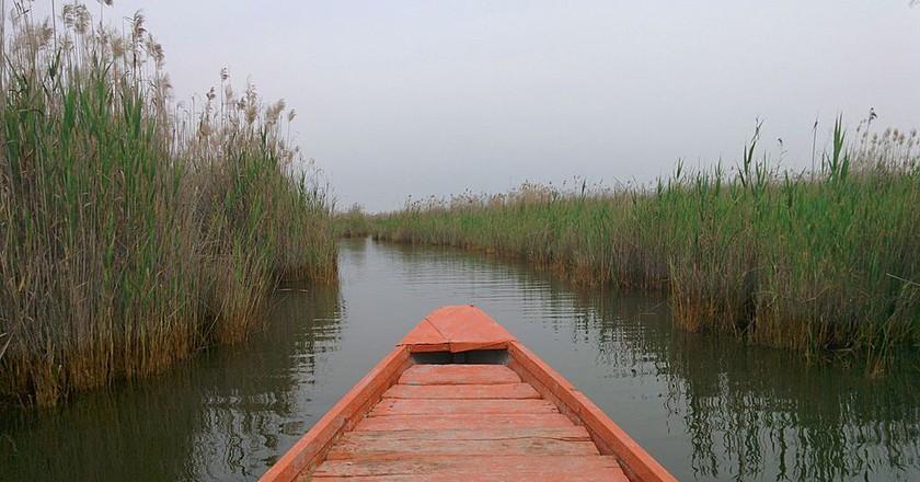 Shadegan Lagoon   © Ehsan Doostmohammadi / Wikimedia Commons