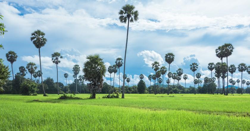 Battamabng is full of stunning countryside   © Elite Studio/ Shutterstock