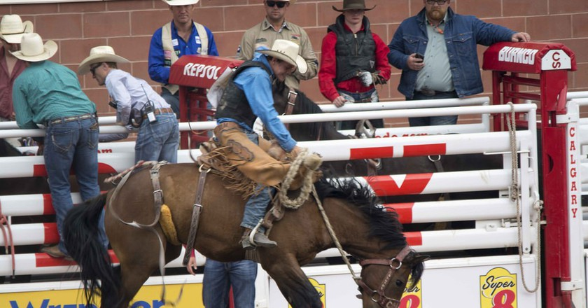 Calgary Stampede action | © David Minty / Flickr
