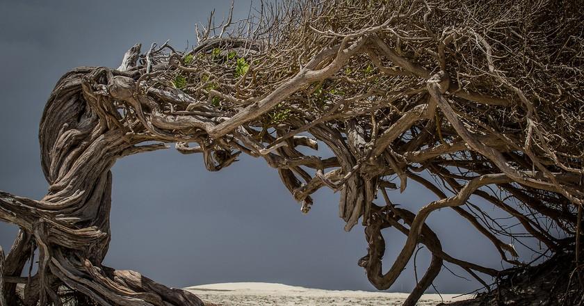 Jericoacoara | ©Bart von Dorp / Flickr
