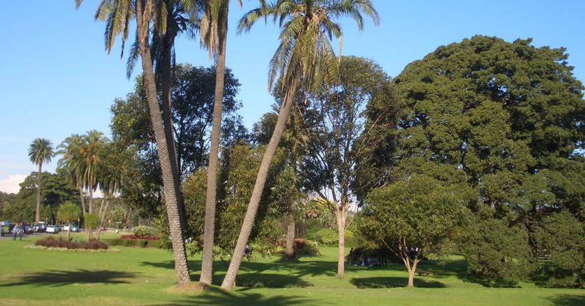 Centennial Park Sydney copyright Wikipedia