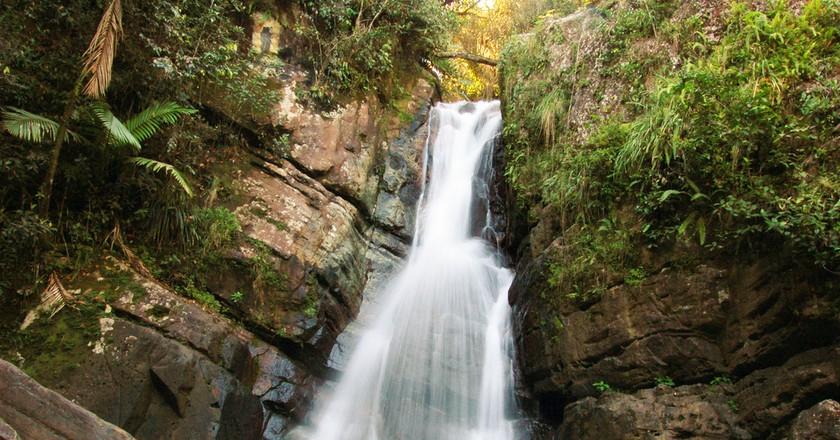 La Mina Falls in Puerto Rico | © Eugene Moerman/Shutterstock