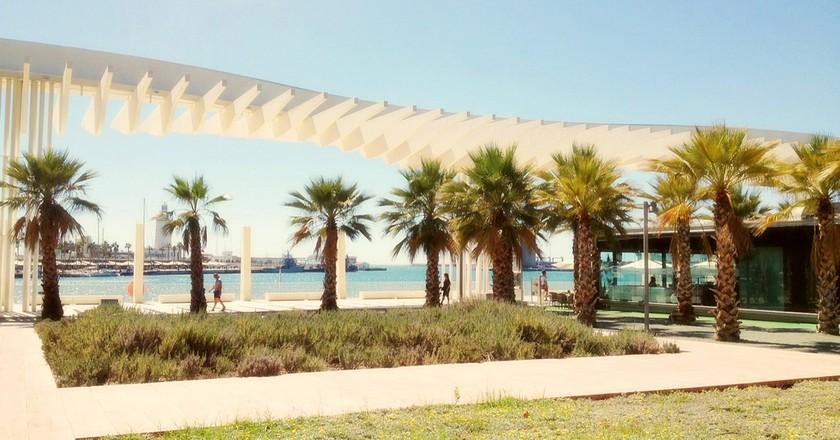 The Palm Garden of Surprises | © Nick Kenrick / Flickr