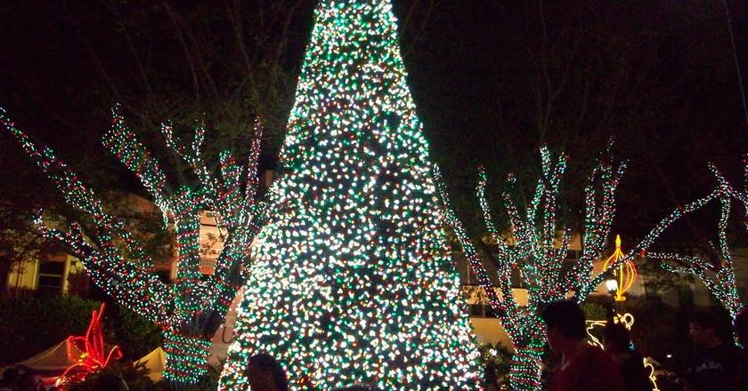 A Christmas tree and lights in Mayaguez   © Cryo Mariena/Flickr