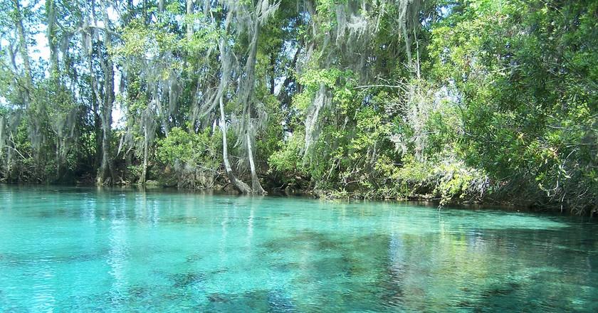Crystal River, Florida | © Paul Clark/Flickr