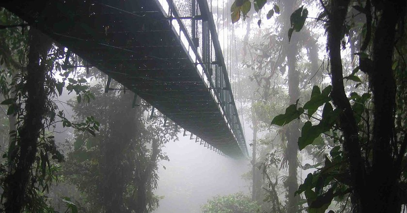 The Santa Elena Cloud Forest © Dirk van der Made/WikiCommons