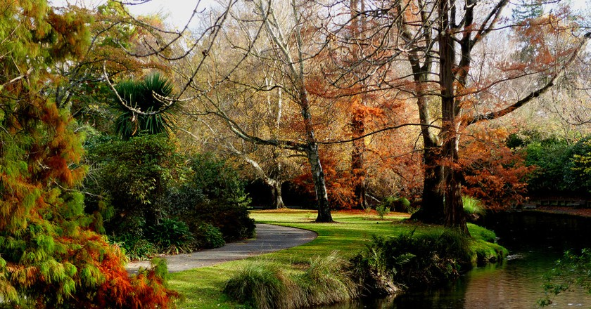 Christchurch Botanic Gardens | © Bernard Spragg/Flickr