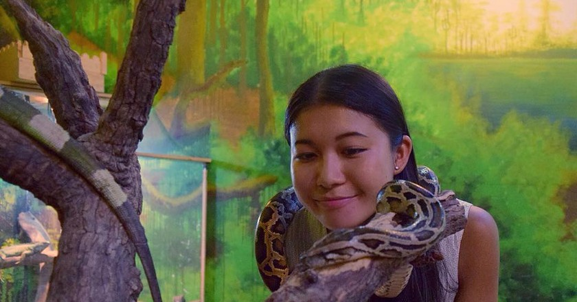 Playing with a snake at Babo Cafe |Courtesy of Janice Lau