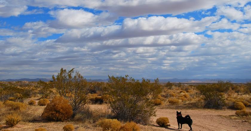 Desert outside El Paso, Texas | © Hadley Garland / Flickr