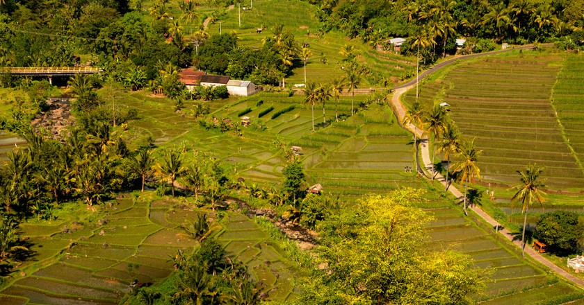 Farming culture of Indonesia | © Selamat Made/ Flickr