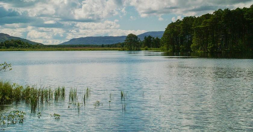 Loch Morlich, Cairngorms   Derek Winterburn/Flickr