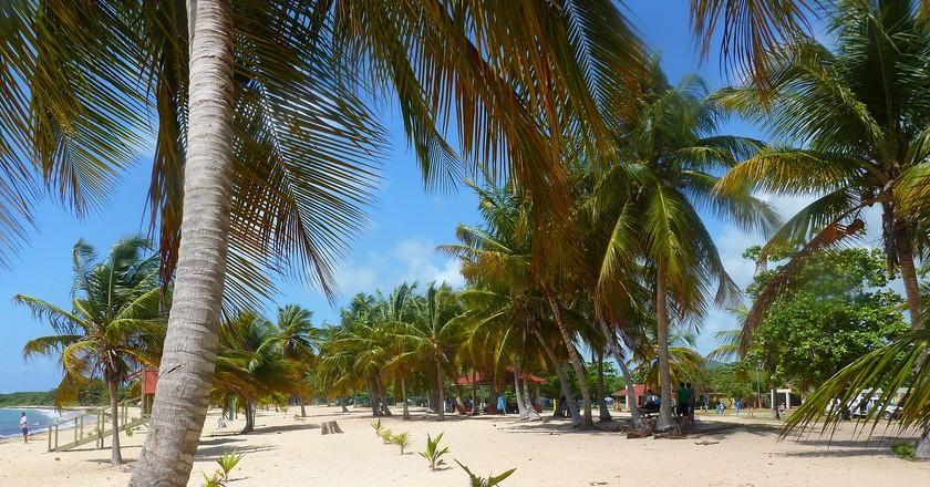 A beach in Vieques, Puerto Rico   © Jirka Matousek/ Flickr