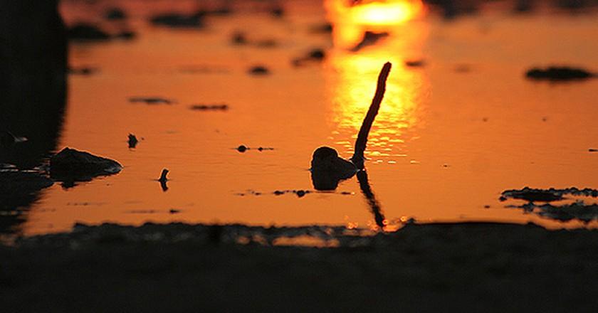 Isla Blanca | © Carlos Mendoza Lima  / Flickr