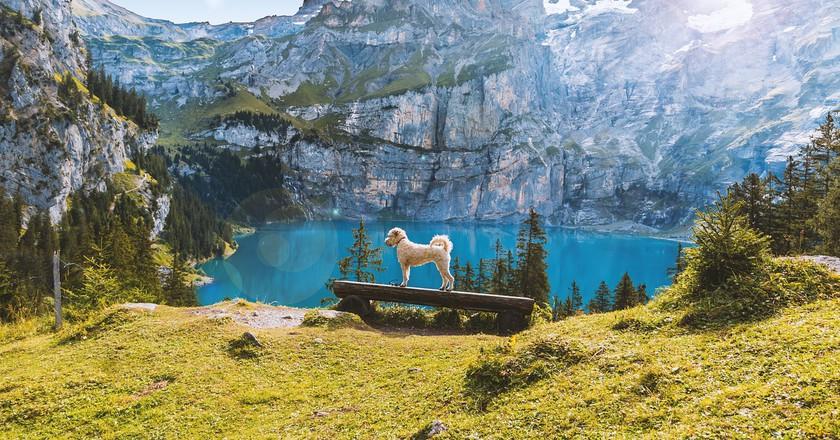 Lake Oeschinen in summer   © Felix_Broennimann/ Pixabay