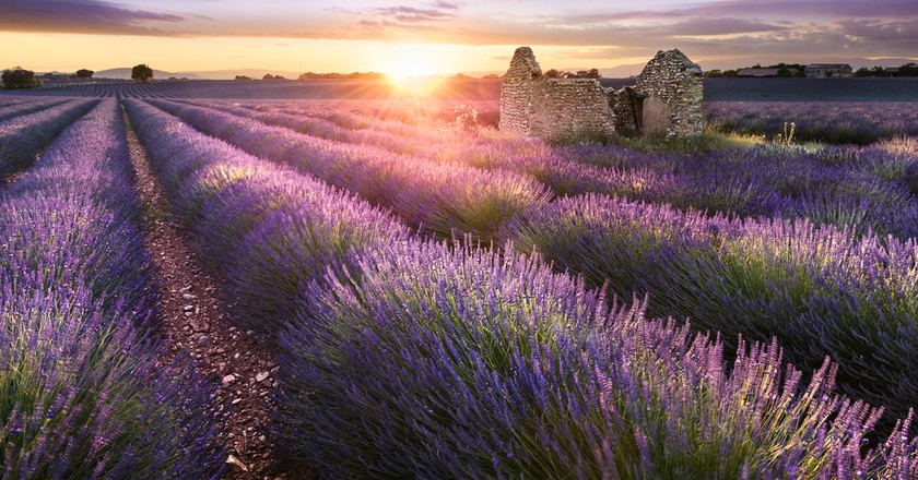 12 Reasons Why You Should Visit Provence At Least Once