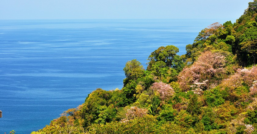 """<a href=""""https://www.flickr.com/photos/34022876@N06/3435762426/"""" target=""""_blank"""" rel=""""noopener noreferrer"""">Which Costa Rican coast is for you? 