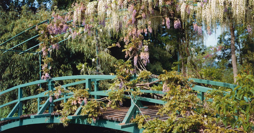 Stephen Shore, 'Wisteria covered bridge', (from 'The Giverny Portfolio'), 1977–83 | Collection of the Vancouver Art Gallery, Donated by Aaron Milrad in memory of Bella and Joseph Milrad