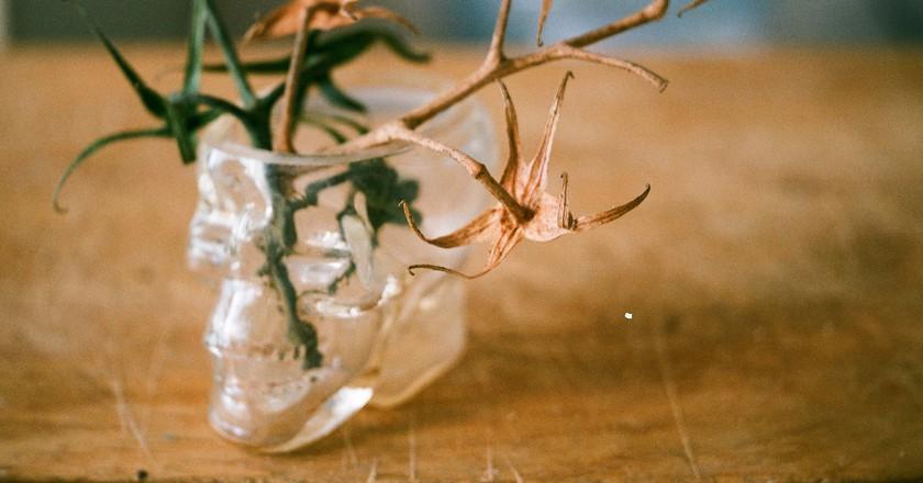 Crystal Skull Glass | © Aliaksandr Palanetski/Flickr