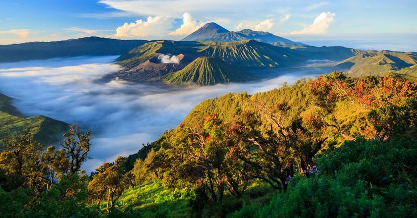 Bromo volcano at sunrise,Tengger Semeru National Park, East Java, Indonesia   © Ikunl / Shutterstock