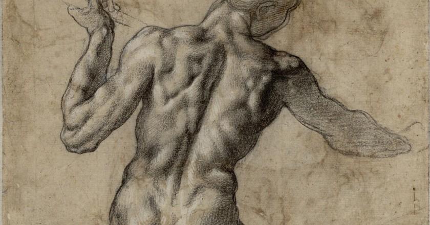 Anatomy study by Michelangelo | Wikimedia Commons