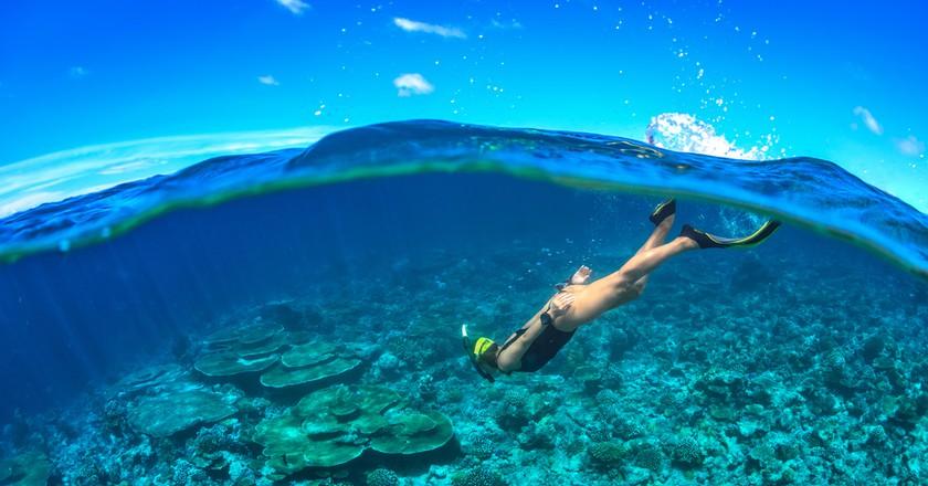 Go snorkeling to unlock the ocean   © William Bradberry/Shutterstock