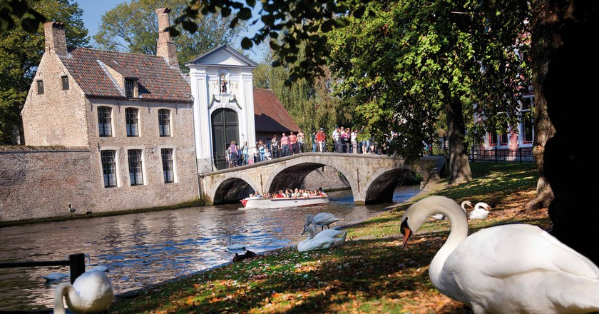 Why Are Swans So Revered In Bruges Belgium