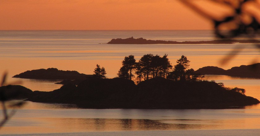 Peach Sunset and Scots Pines, Lochaber | © Courtesy of the Author