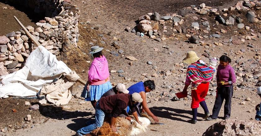 Sacrifices in Bolivia | © Manuel Menal / Flickr