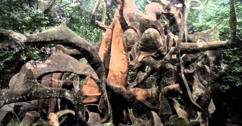 Osun Oshogbo Grove  © youtube.com
