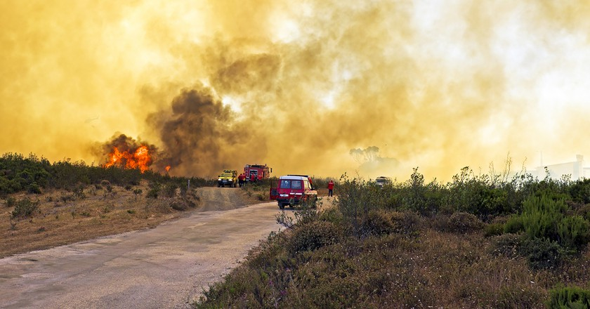 Forest fires in Portugal © Steve Photography / Shutterstock