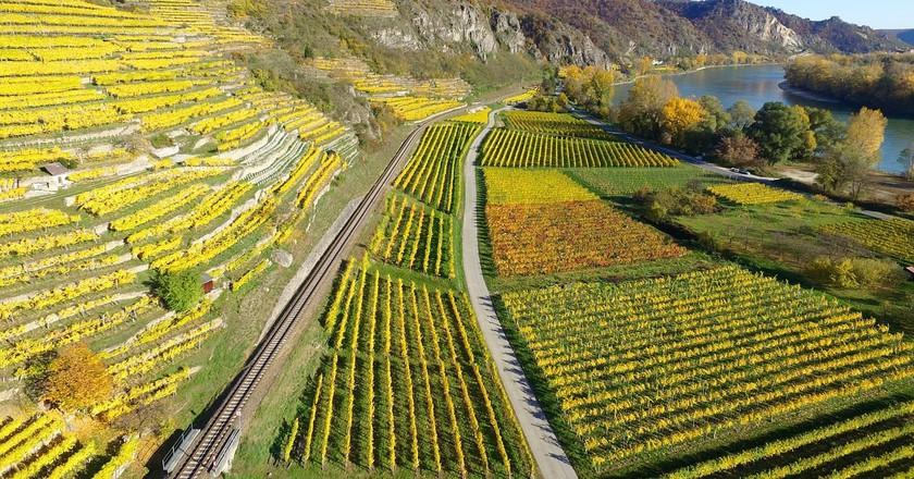 Upper Rhine Valley | © Free-Photos/Pixabay