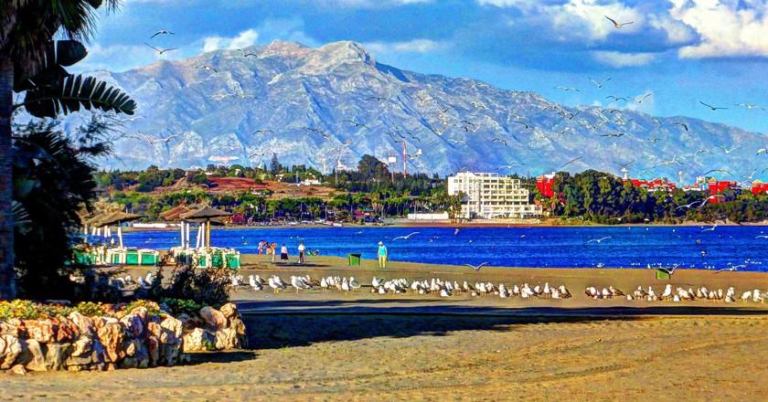 The beach at Estepona; Alcalaina/flickr