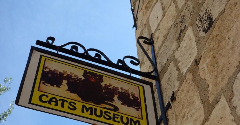 Cats Museum Kotor | © francois schnell/Flickr