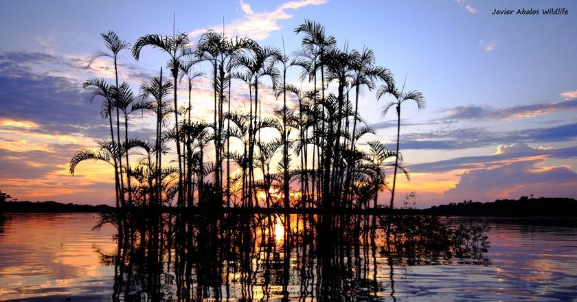 Cuyabeno Wildlife Reserve | © Javier Abalos Alvarez/Flickr