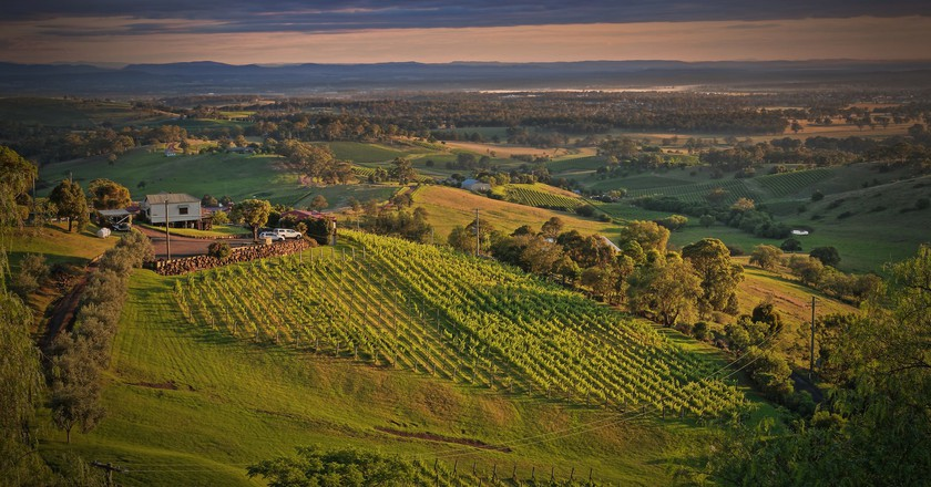 Hunter Valley | © Flickr / Kevin Rheese