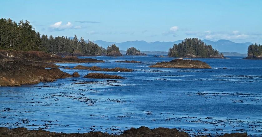 Wild Pacific Trail vistas