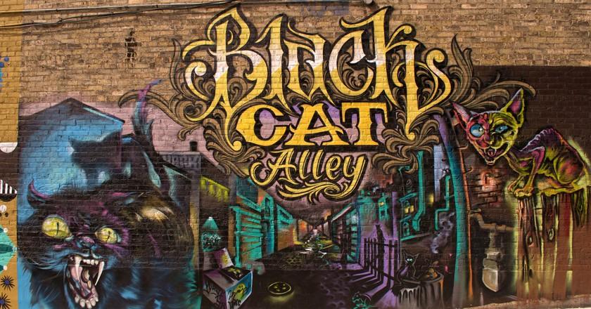 Black Cat Mural Alley   © Brady Wieland/Flickr