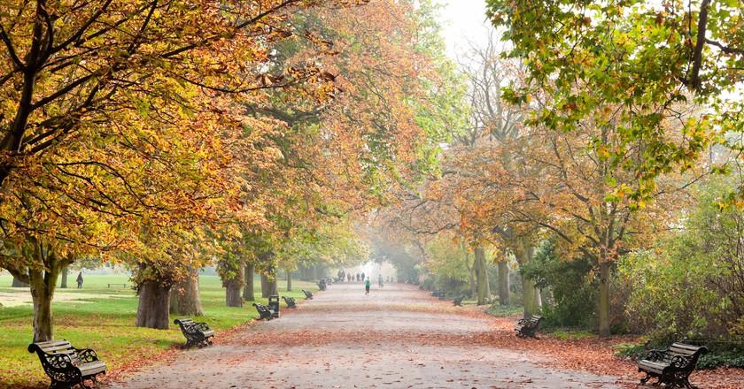 Regent S Park In Autumn London England