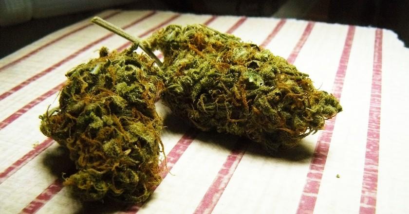 Marijuana | © tanjila ahmed / Flickr