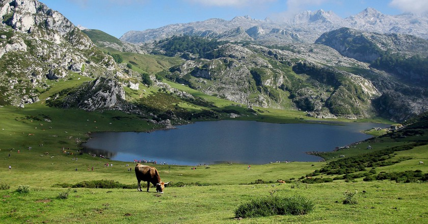 Go hiking around the Lakes of Covadonga in Asturias