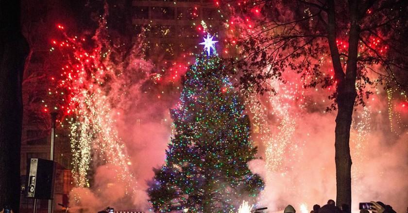 Tree Lighting in Halifax   Courtesy of Communications Nova Scotia